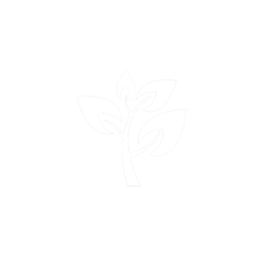 Evergreen Primary School